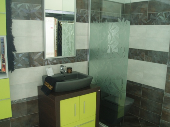 shower screen glass panel